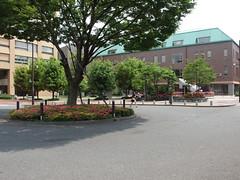 Tokyo University (Tokyo Daigaku)