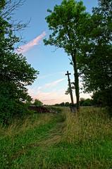 La Croix de la stabule - Photo of Cussey-les-Forges