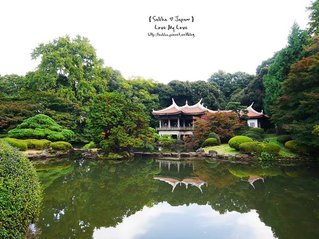 日本東京自由行新宿御苑庭園景點 (40)