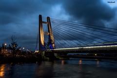 Ponte Estaiada da Barra da Tijuca - Rio de Janeiro