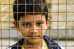 Boy behind the fence