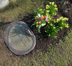 Spring on a grave