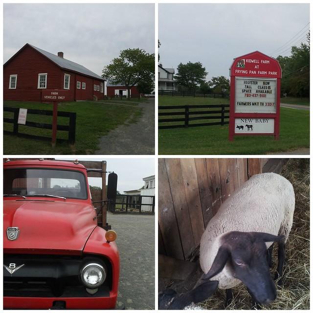 pat sloan kidwell farm