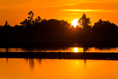 20140512_rice sunset 0573_online copy
