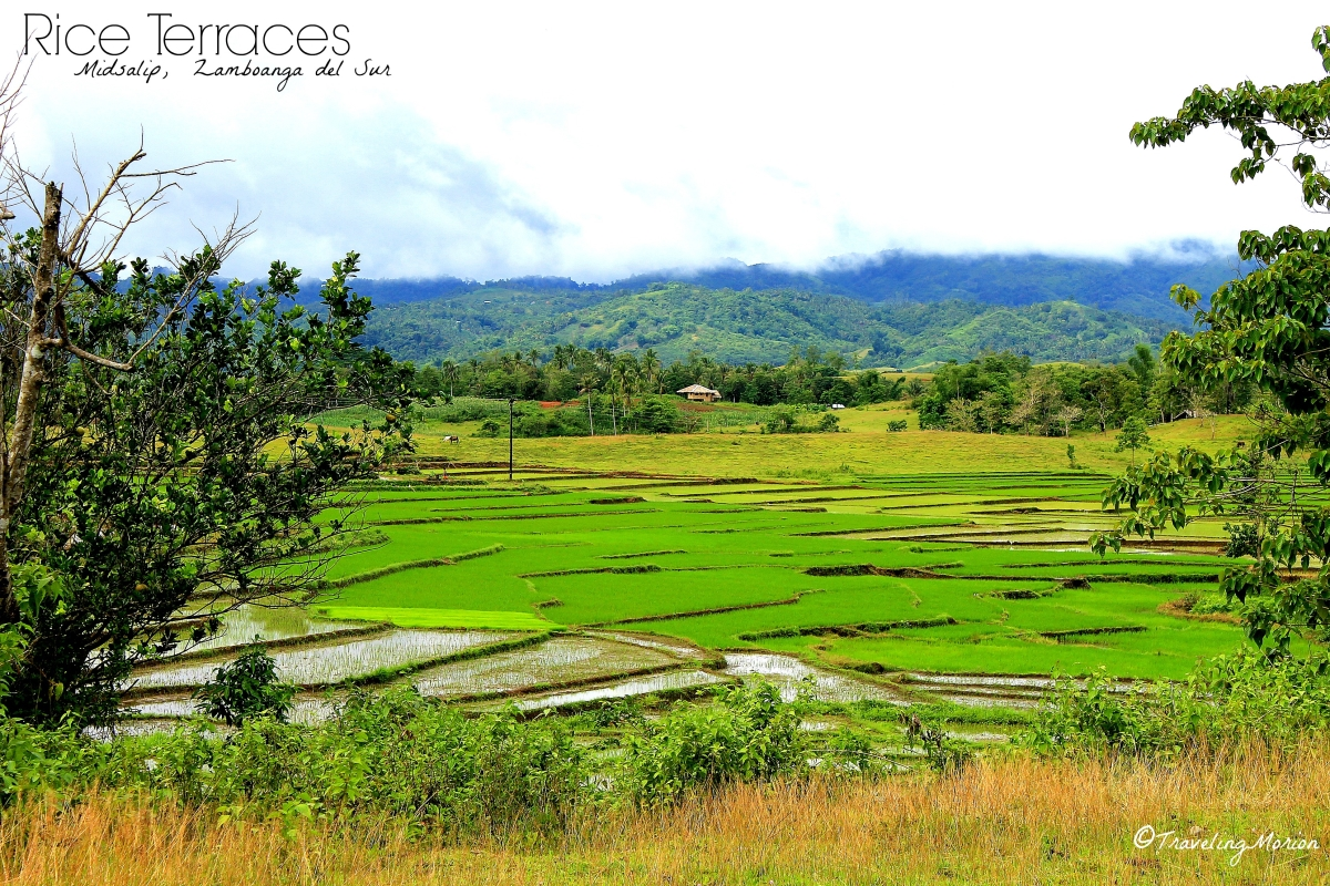 Midsalip Rice Terraces