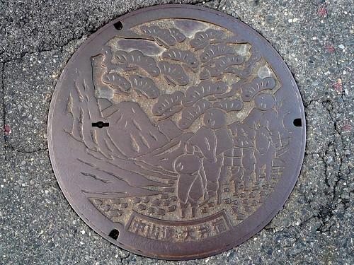 Ōi Ena Gifu, manhole cover (岐阜県恵那市大井町のマンホール)