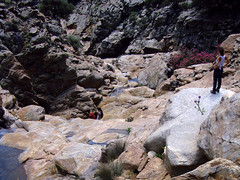 EGRf018 (walking in the riverbed)