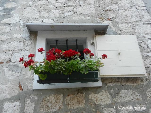 Герань в окнах