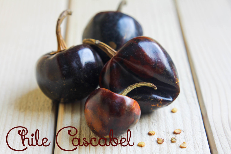 Chile Cascabel #1