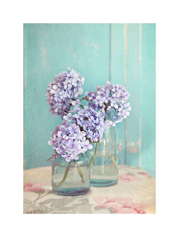 flowers-30