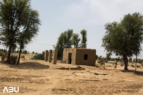 A village in the middle of nowhere in Dadu, Sind, Paksitan