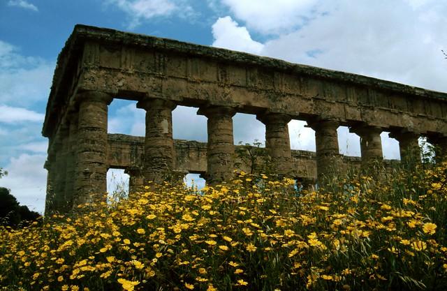 39 Segesta Greek Temple in Sicily, Italy