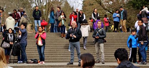 Crowd of Photographers