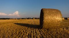 Jerichower Land / Germany