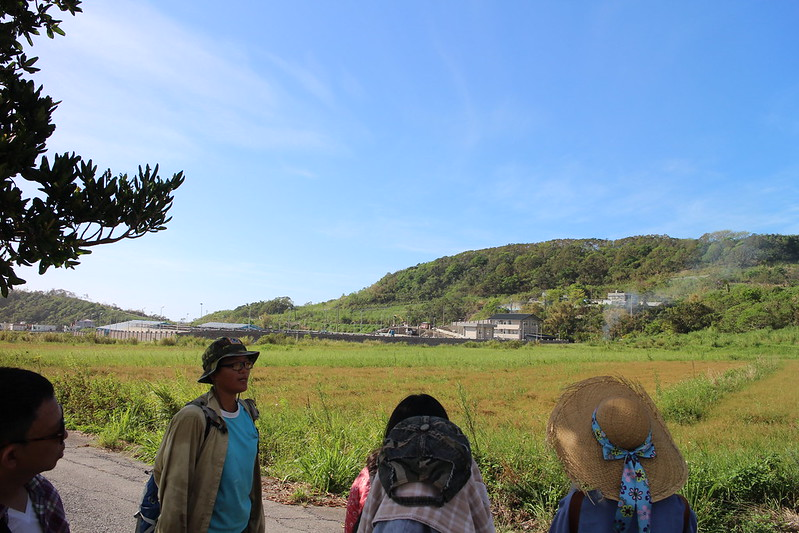 又是早起工作的一天,上山的路上看到了淨水廠工地,是為了因應大量遊客和渡假村開發而建的;本來,放眼望去都是綠油油的農田。