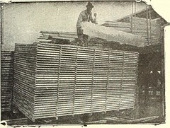 "Image from page 1474 of ""Canadian wood products industries"" (1922)"