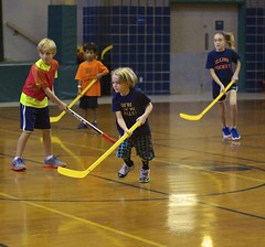 roller hockey(0.0), roller in-line hockey(0.0), indoor field hockey(0.0), floorball(0.0), stick and ball games(1.0), floor hockey(1.0), sports(1.0), team sport(1.0), hockey(1.0), ball game(1.0),