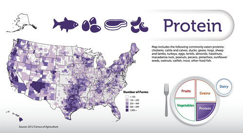 Map includes the following commonly eaten proteins: chickens, cattle and calves, ducks, geese, hogs, sheep and lambs, turkeys, eggs, lentils, almonds, hazelnuts, macadamia nuts, peanuts, pecans, pistachios, sunflower seeds, walnuts, catfish, trout, other food fish. Source: 2012 Census of Agriculture. Click to enlarge.