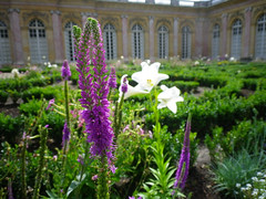 Grand Trianon flower gardens, Versailles