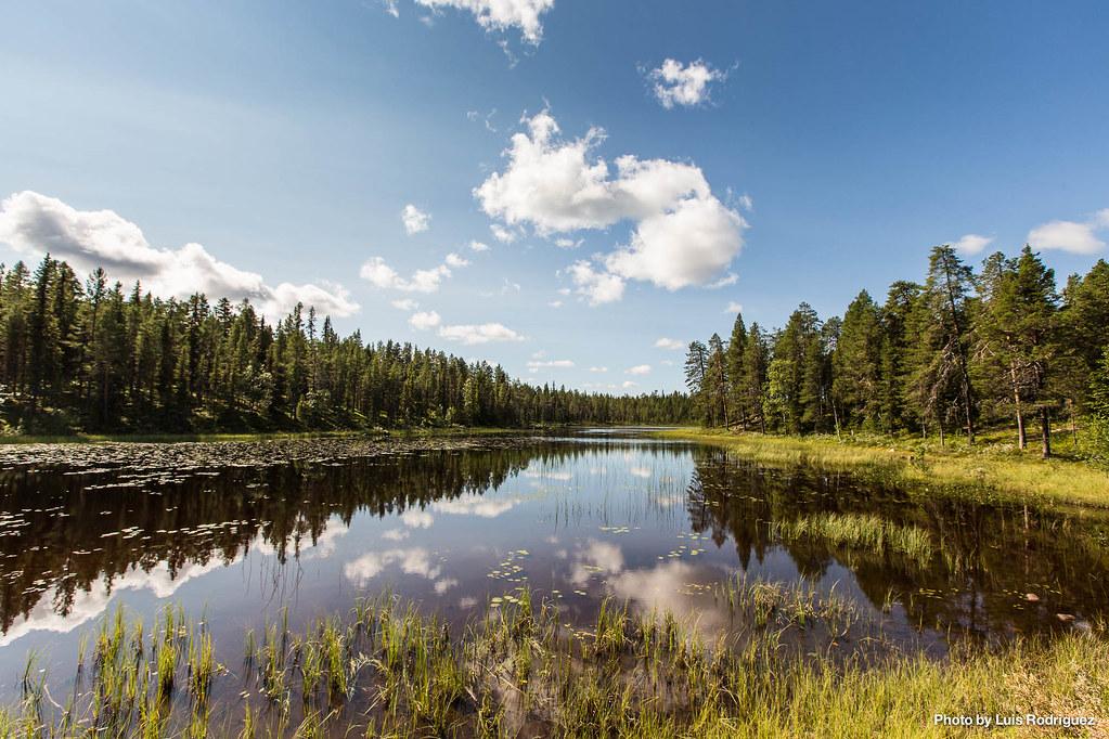 4 días en Laponia sueca-11