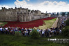 Tower of London Remembers