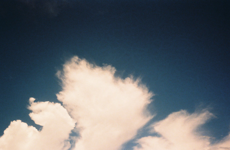DisposableCamera-Blog-009