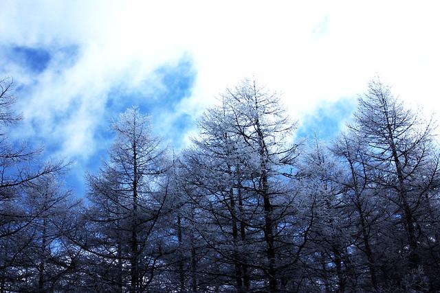 2014-01-19_00119_入笠山