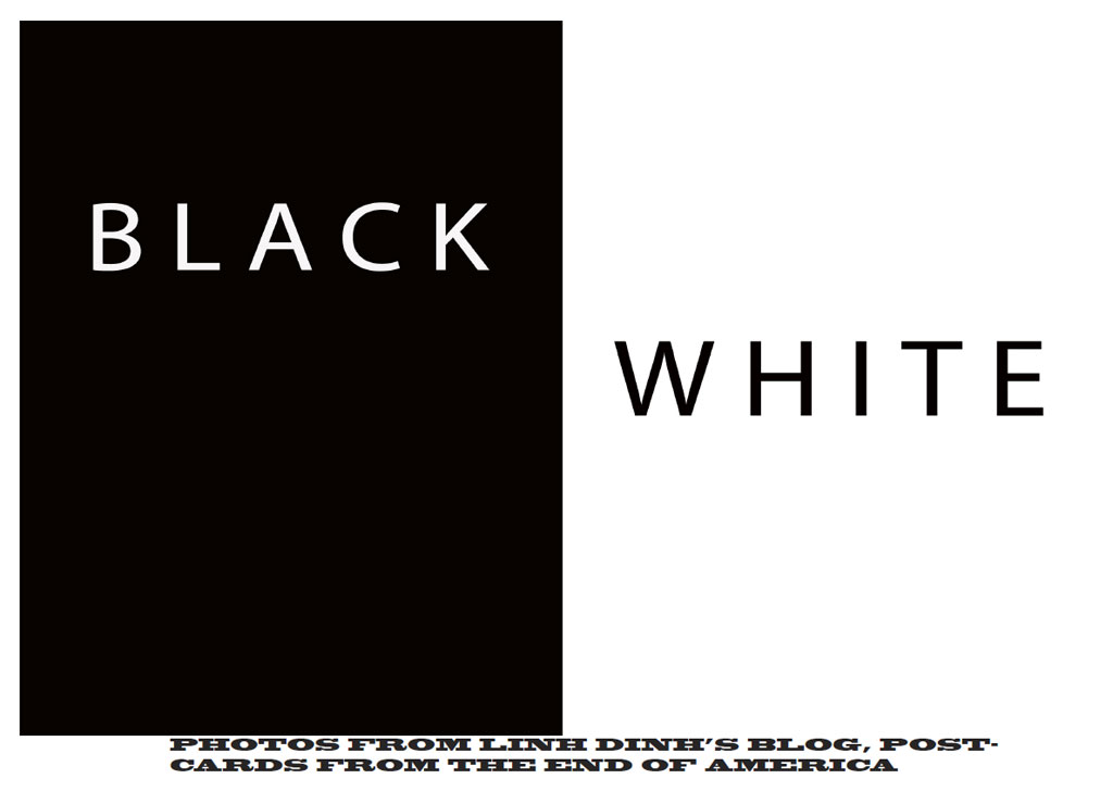 bwhite-0