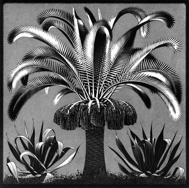 014-M.C. Escher-Via wikiart.org