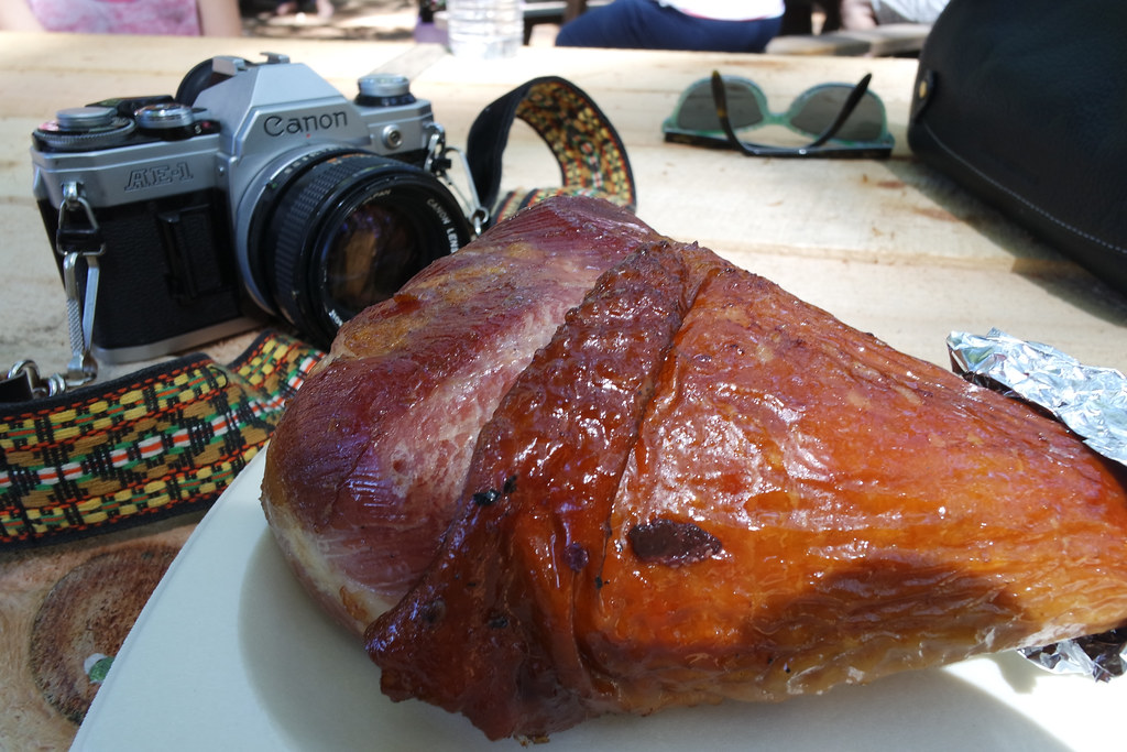 Camera & Turkey Leg