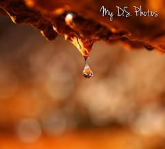 Waterdrop in slow motion