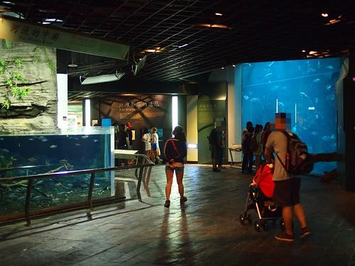 國立海洋生物博物館12