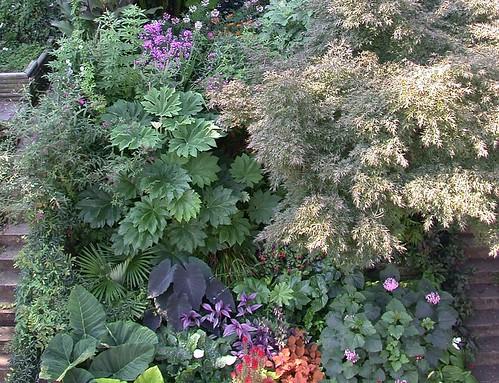 Garden (cropped)