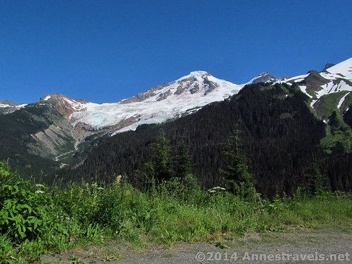 Mount Baker from the road above the Heliotrope Trailhead, Mount Baker-Snoqualmie National Forest, Washington