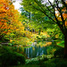 Nitobe Memorial Garden by どこでもいっしょ