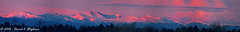 Pink Mount Evans
