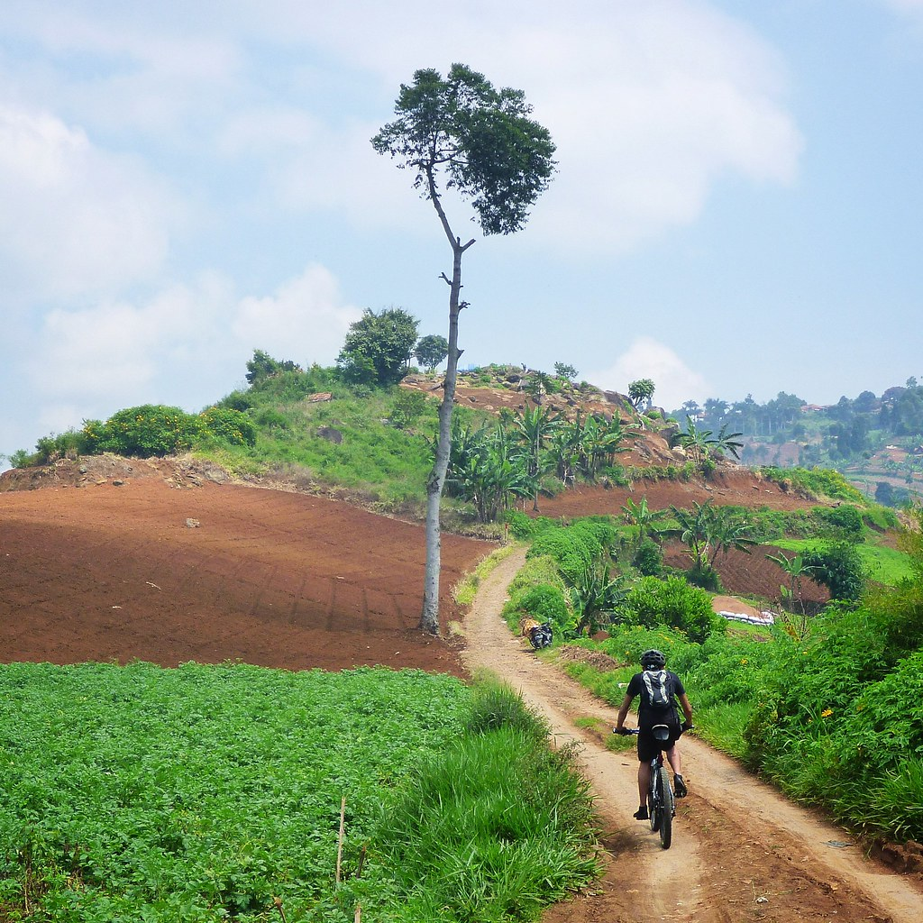 Cheaper Fork means More Money for Bicycle Adventure