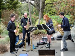 Dunedin. In the Botanic Gardens at rhododendron time. A jazz band.