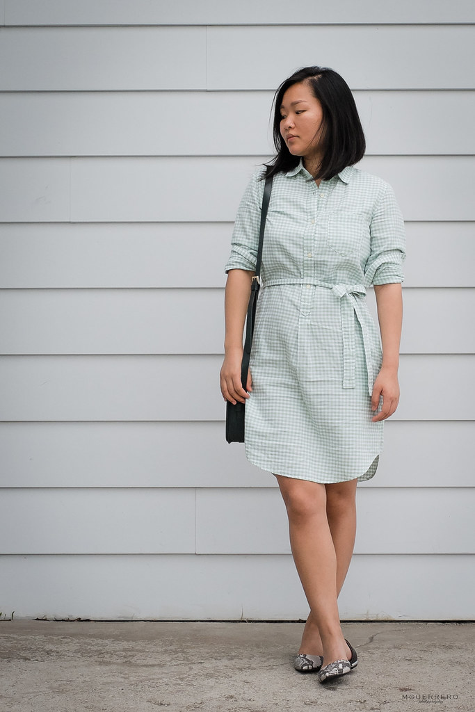 mint gap gingham oxford shirt dress