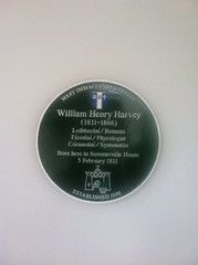 Photo of William Henry Harvey green plaque
