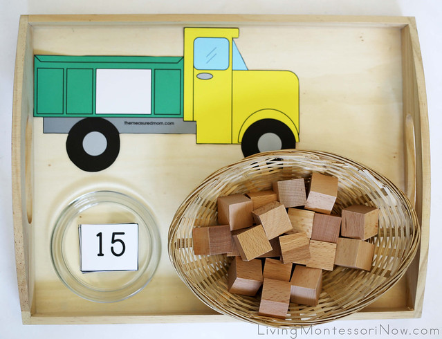 Dump Truck Counting Tray