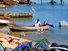 Punta Umbria 09