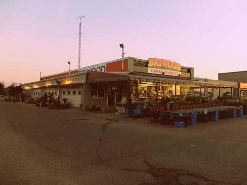 Briwood Farm Market