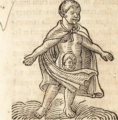 """Image from page 532 of """"Prodigiorvm ac ostentorvm chronicon : quae praeter naturae ordinem, motum, et operationem, et in svperioribus & his inferioribus mundi regionibus, ab exordio mundi usque ad haec nostra tempora, acciderunt ..."""" (1557)"""
