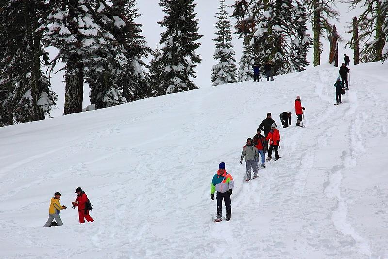 IMG_8442 Ranger-Led Snowshoe Walk