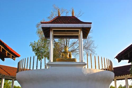 Buddha at the Mongolian monastery in Lumbini