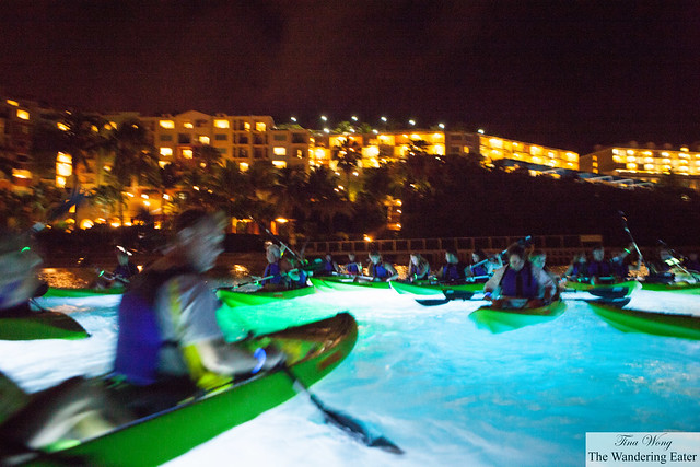 Night Kayaking at Adventure Center (St. Thomas, USVI)