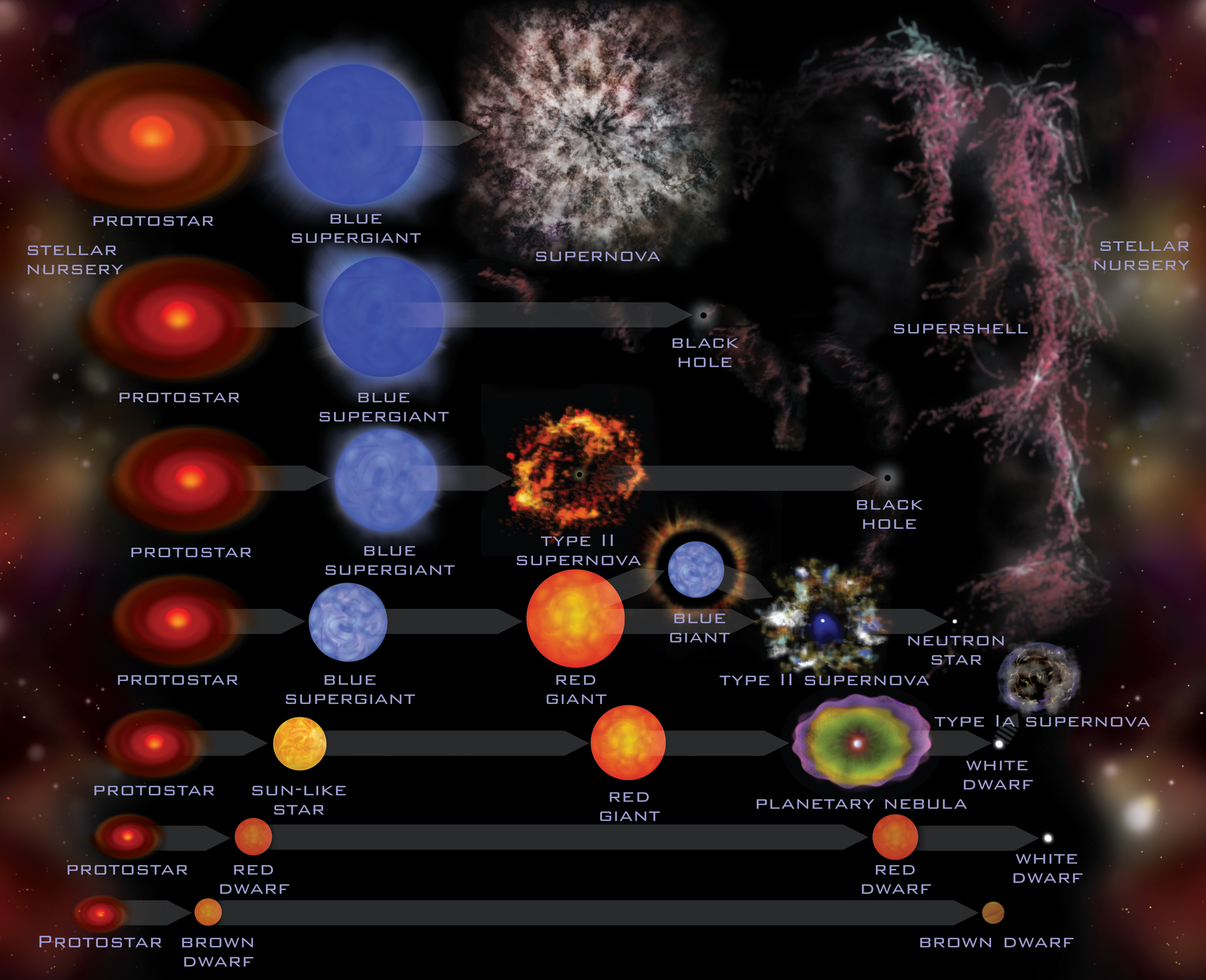 D2 Stellar Characteristics and Stellar Evolution Mr Johnsons – Stellar Evolution Worksheet