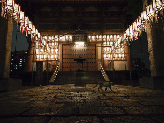 Shitennoji Temple (四天王寺)