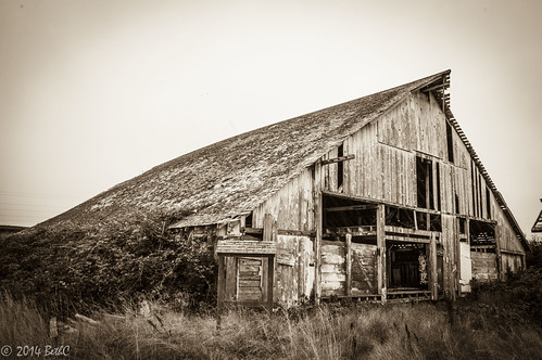 Forgotten on the Farm